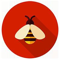 icon bee